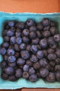 Blueberries are in season now